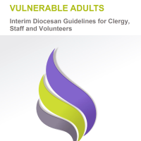 Vulnerable-Adults-Cover